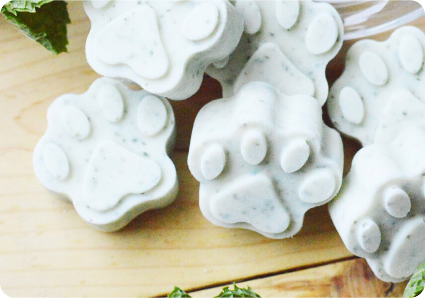 Frozen Homemade Dog Treats